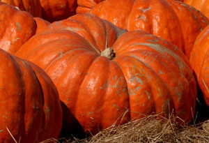 halloween agrimercato