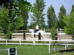Corte Nigella equitazione