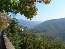 Parco Alpi Liguri Bosco Addomesticato