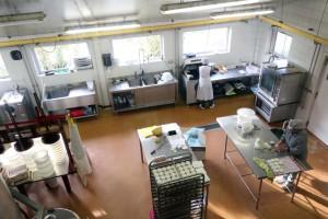 capre laboratorio formaggi