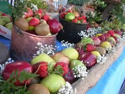 freddo frutteti 1
