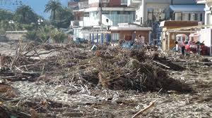 legna spiagge 2