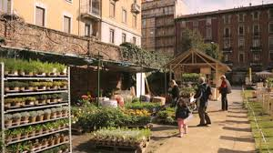 cascina cuccagna vendita piante