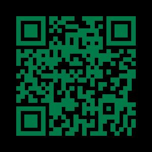 QR Code senza logo