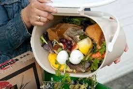 spreco alimentare pattumiera
