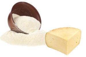 latte in polvere per fare formaggi
